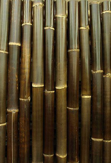Gartenmobel Rattan Runder Tisch : BambusDepot  Information Per Telefon, Düsseldorf  Infobel