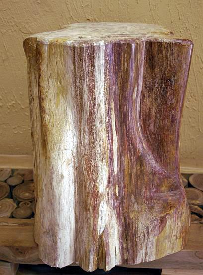 Beistelltisch Versteinertes Holz ~ versteinertes Holz fossiles Holz petrified wood Stamm Beistelltisch 59
