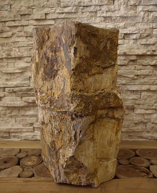 versteinertes holz fossiles holz petrified wood stamm steinobjekt 47 30kg vh31. Black Bedroom Furniture Sets. Home Design Ideas